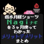 吸水サニタリーショーツNagiを3ヶ月使ってみてわかったNagiのメリット・デメリットまとめ